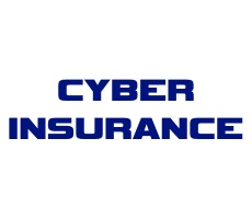 June 10 Webcast: Cyber Insurance — A Pragmatic Approach to a Growing Necessity